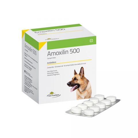 amoxilin-estuche-100-compr
